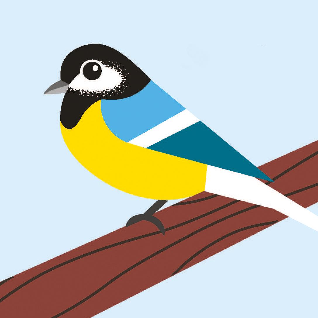 birds_Seite_02